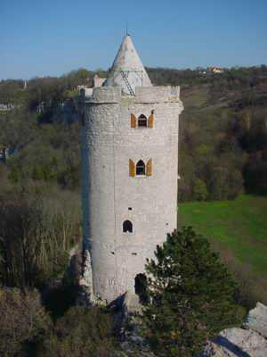 Bad Kösen, Burg Saaleck